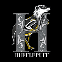 Hufflepuff Charm - Harry Potter Official T-shirt