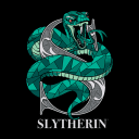 Slytherin Charm - Harry Potter Official T-shirt