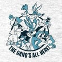 Looney Tunes: Gang - Looney Tunes Official T-shirt
