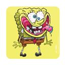 Krusty Sponge - SpongeBob SquarePants Official Coaster