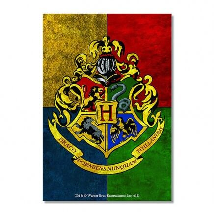 Harry Potter: Hogwarts House Crest - Rectangle Fridge Magnet