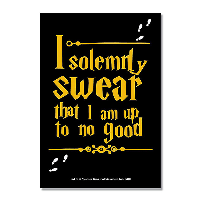 Harry Potter: I Solemnly Swear - Rectangle Fridge Magnet