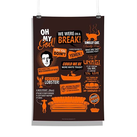 Friends: Infographic Orange Poster