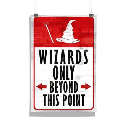 Harry Potter: Wizards Only