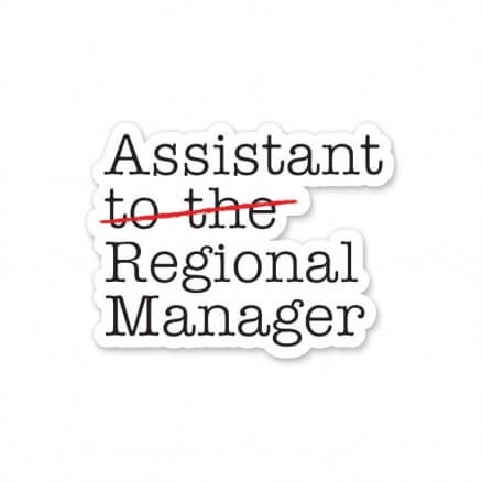 Assistant Manager - Sticker