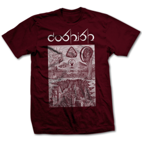 Coshish Tee - Maroon (Limited Edition)