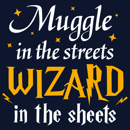 Muggle In The Streets Wizard In The Sheets Hary Potter T