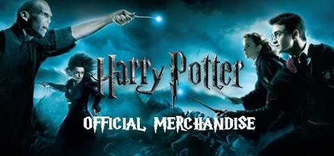 Harry Potter top banner